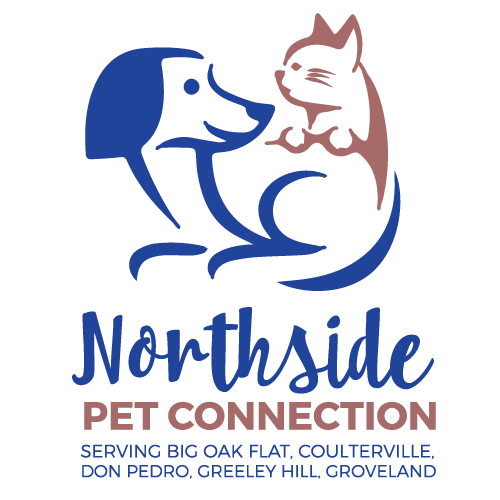 Stem School Greeley: Pet Spay/neuter Assistance For